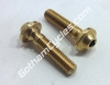 Ducati Left & Right Special Mirror Screws: 848-1198 82111701A
