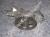 Ducati Oil Pump: 848-1098, HM, Monster 1100