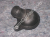 Ducati Oil Crankcase Breather Valve: 848-1198